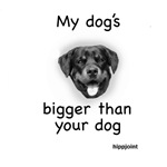 My dog's bigger than your dogNew Section