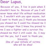Dear Lupus