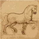 Leonardo Da Vinci horse art gifts & clothes.