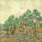 The Olive Orchard by Van Gogh