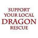 Dragon Rescue