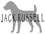 Jack Russell Dog