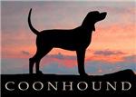 Sunset Coonhound