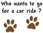 Paw Prints Dog Car Ride