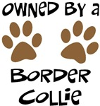 Owned By A Border Collie