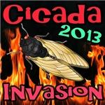 Cicada 2013 Fire