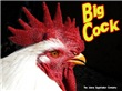 Big Cock