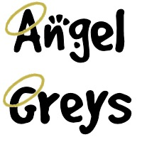 ANGEL GREYS