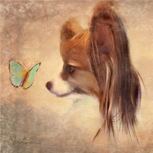 Gifts Ideas for the Papillon Lover