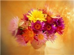 Flower Gifts, LOTS of Different Flowers