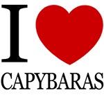 i love capybara