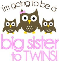 Owl Big Sister To Twins