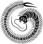 Centipede (Mukade)