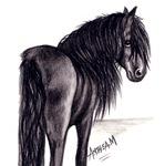 HORSES - 'FRIESIAN MARE'