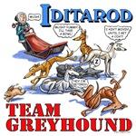 Team Greyhound