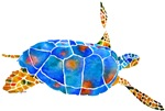 Sea Turtle 2