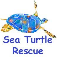 Sea Turtle 2 Rescue