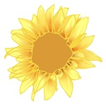 Elegant Sunflower