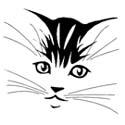 Cat T-Shirts Cat T-Shirt
