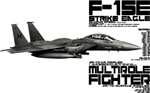 F-15E Strike Eagle #4