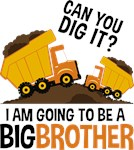 Construction Big Brother