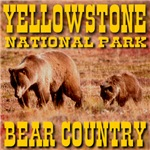 Yellowstone National Park Bear Country