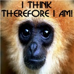 I Think Therefore I Am!
