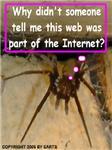 Internet Spider