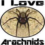 I Love Arachnids