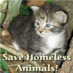 Save Homeless Animals