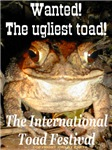 Wanted! The ugliest toad!