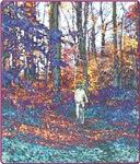 Bicycling Art