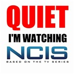 Quiet Im Watching NCIS