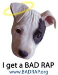 Get a BAD RAP