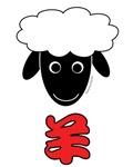 Chinese Sheep