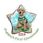 Yellow Lab Guide Pup 1st Xmas 2009