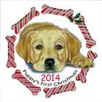 Yellow Lab Pup 1st Xmas