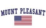 Mount Pleasant Mi US Flag
