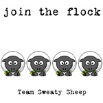 Join the Flock