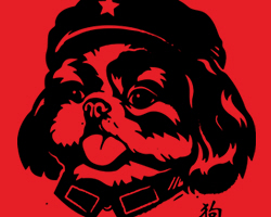 Chairman Shih Tzu Tongue