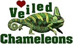 Love Veiled Chameleons