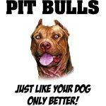 Pit Bulls