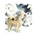Eskimo Dog Watercolor