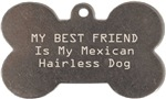 My Best Friend Is My Mexican Hairless Dog
