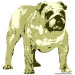 Brown Bulldog Design