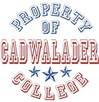 Cadwalader College Property Of Custom T-shirts Gif