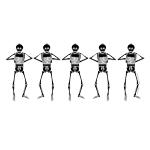 Washboard Skeletons