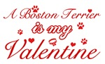 A Boston Terrier is my valentines