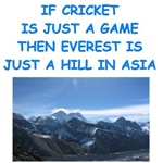 a funny cricket joke on gifts and t-shirts.