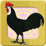Whitefaced Spanish Rooster